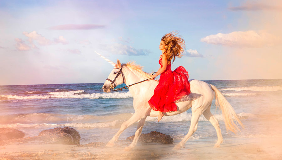 unicorn girlfriend definition