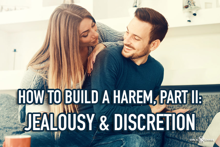 How To Build A Harem Pt 2 Jealousy And Discretion Girls Chase
