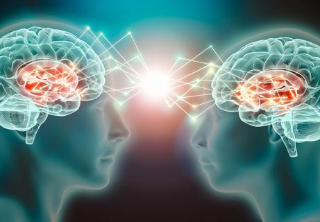 mirror neurons in seduction