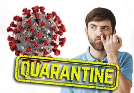 coronavirus quarantine things to do