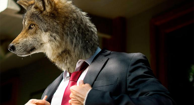 suit-wearing wolf