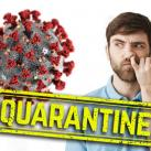 coronavirus quarantine things to do